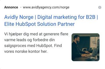 Udvidelser - Avidly Denmark - Google Ads 2021-08-11 15-39-48